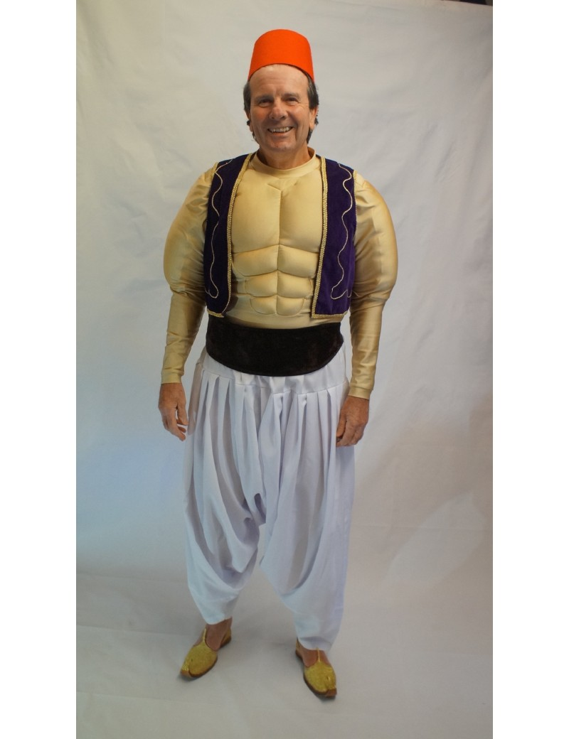 Aladdin Hire Costume Make Believe CK8