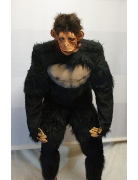 Chimp Ape Animal Hire Rental Deluxe Costume