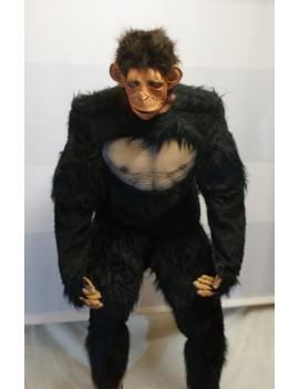 Chimp Ape Animal Hire Rental Deluxe Costume