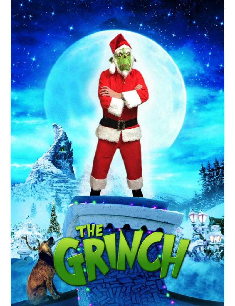 Green Santa Costume