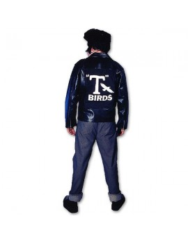 Grease Danny Zuko T Bird John Travolta mens fancy dress tv 70s musical hire costume Make Believe BZ11B