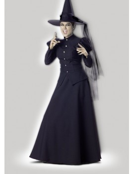 Witch Of The West Hire Costume In Character Q26 Q26A